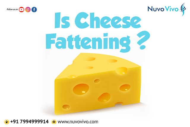 Is Cheese Fattening